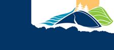 Oro Logo 225x100